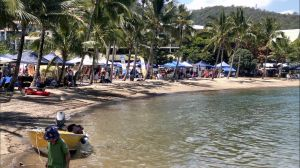 Lions Airlie Beach Community Markets - Accommodation Port Hedland
