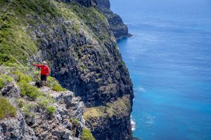 Seven Peaks Walk at Pinetrees Lord Howe Island - Accommodation Port Hedland