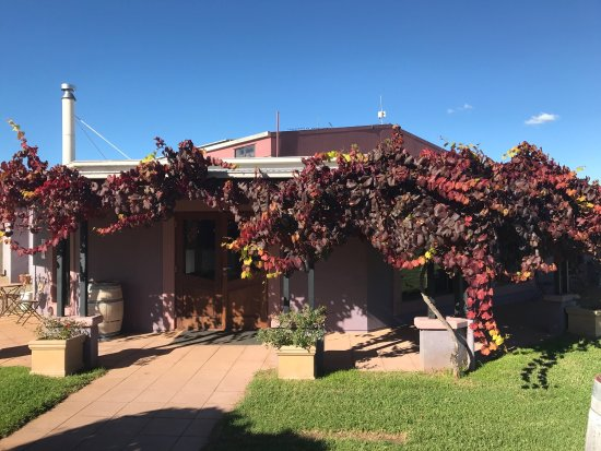 Jester Hill Wines - Accommodation Port Hedland